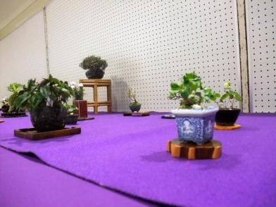 Koujitukai _Tokujyukai joint exhibition (13)