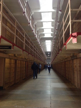 Alcatraz | Bonsai Hewes