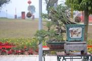 Guangzhou penjingi exposition 038