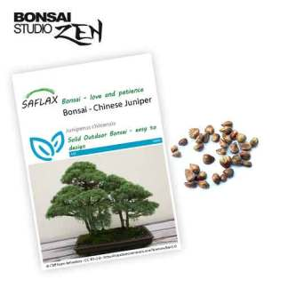 Juniperus chinensis zaden