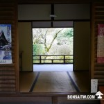 [日本庭園]高桐院.京都