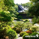 [日本庭園]青蓮院.京都