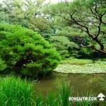 [日本庭園]平安神宮神苑.京都