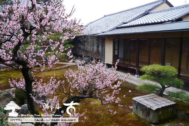 古美樹滿峯園日本庭園妙顯寺