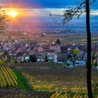 Paysages d'automne sur la Route des Vins d'Alsace – petite galerie photo