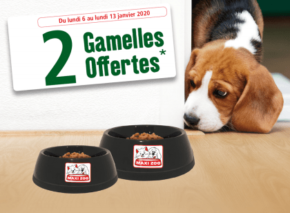Read more about the article 2 gamelles offertes chez Maxi Zoo