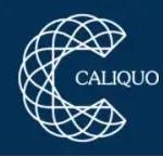 Caliquo brosse à dents rechargeable