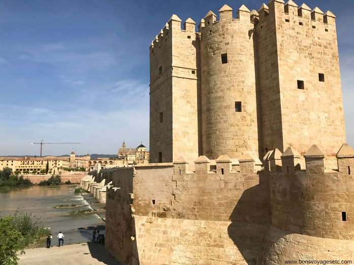 Torre-Calahorra