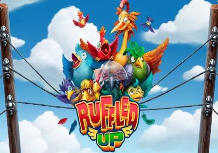 "Ruffled Up – ""ptice na žici"""