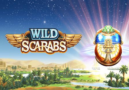 Wild Scarabs – izbori se za svoj dobitak!