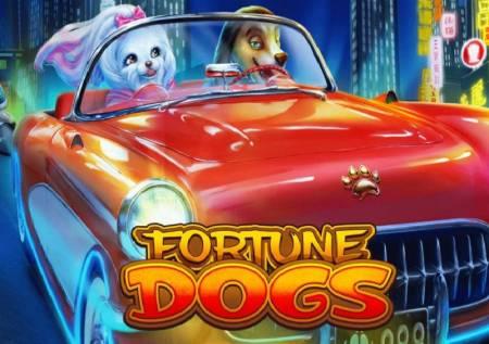 Fortune Dogs – kazino avantura uz omiljene psiće