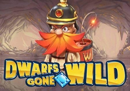 Dwarfs Gone Wild i Snežana – kazino igra sa pregršt bonus funkcija!