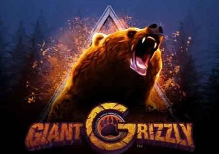Giant Grizzly – krenite u lov na kazino bonuse!