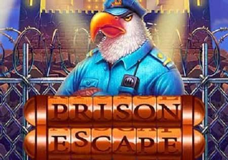 Prison Escape – ptičice i bonusi u novom video slotu!