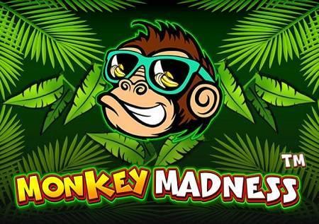 Monkey Madness – jednostavan slot!