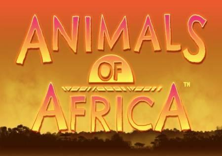 Animals of Africa –  dvostruki simboli!