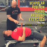 scapular position