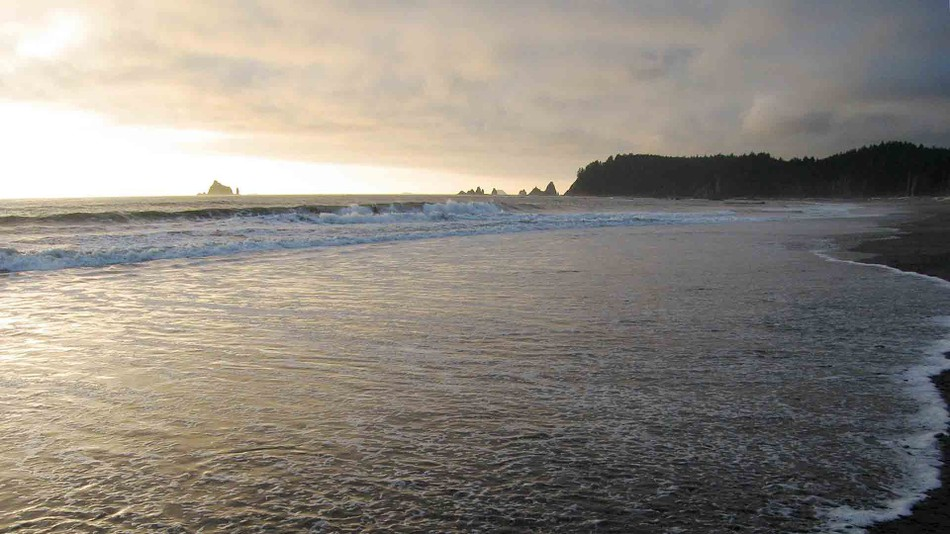 The plethora of beaches itself makes it one of the best reasons why you should visit Washington state
