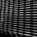 Had to spend a few weeks on bed-rest...Bamboo Blinds As Bars x