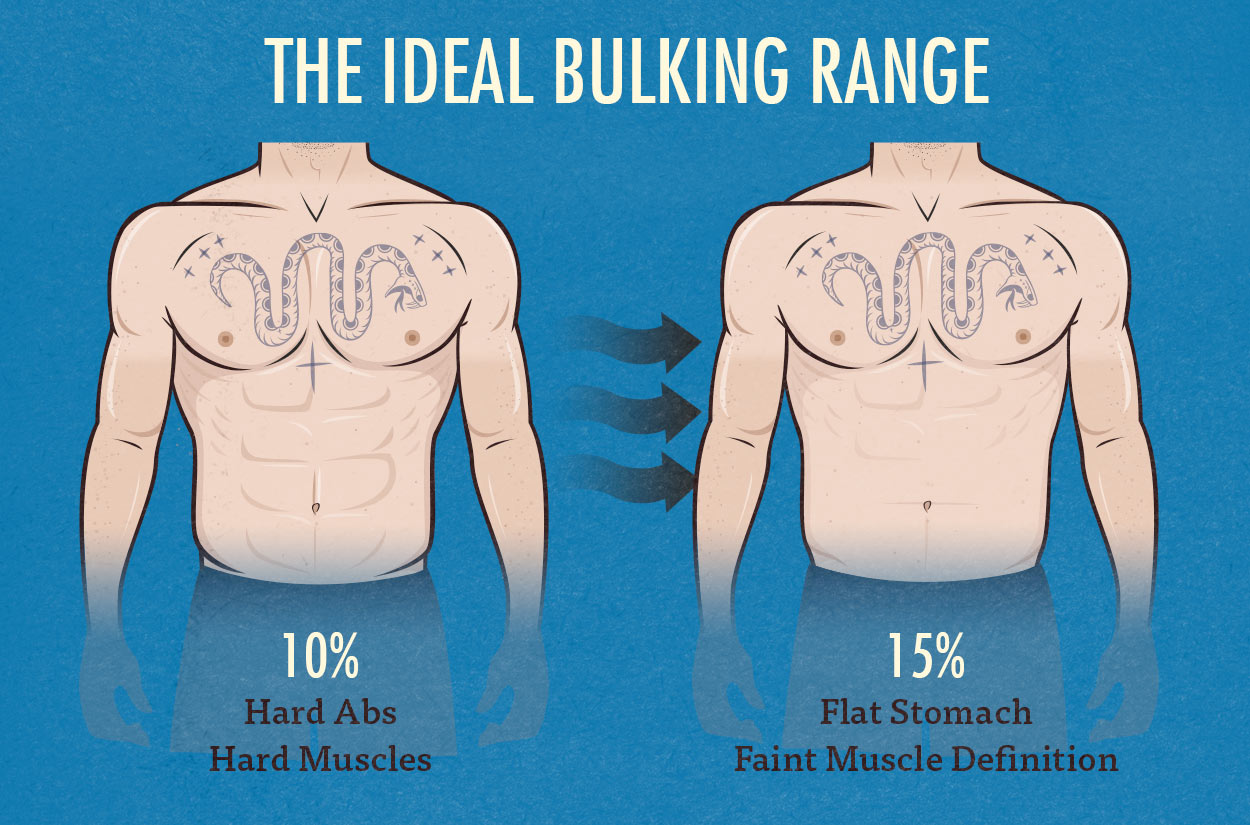 Best Body Fat Percentage For Bulking Strong