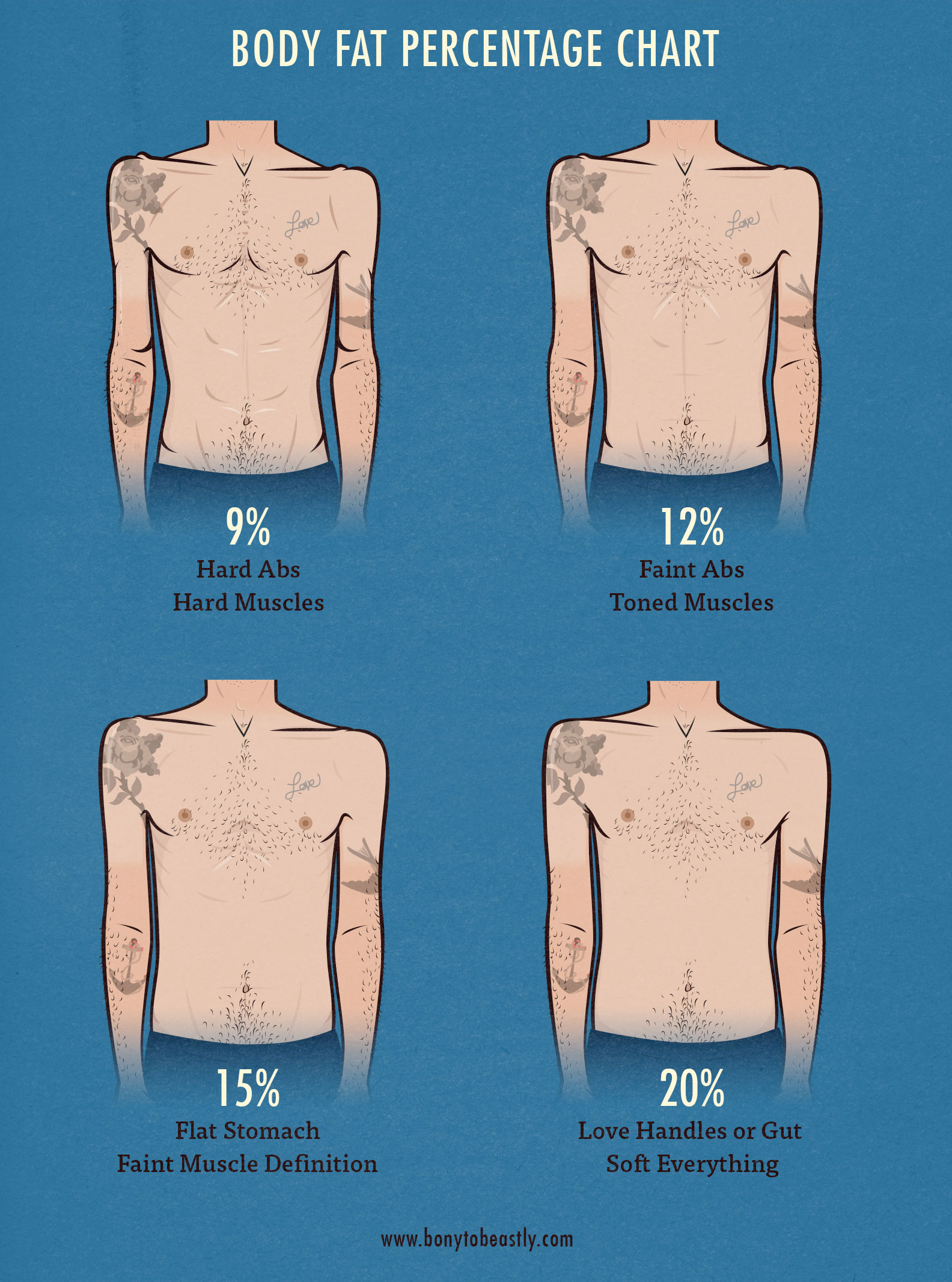 hight resolution of men s body fat percentage illustration chart bony to beastly