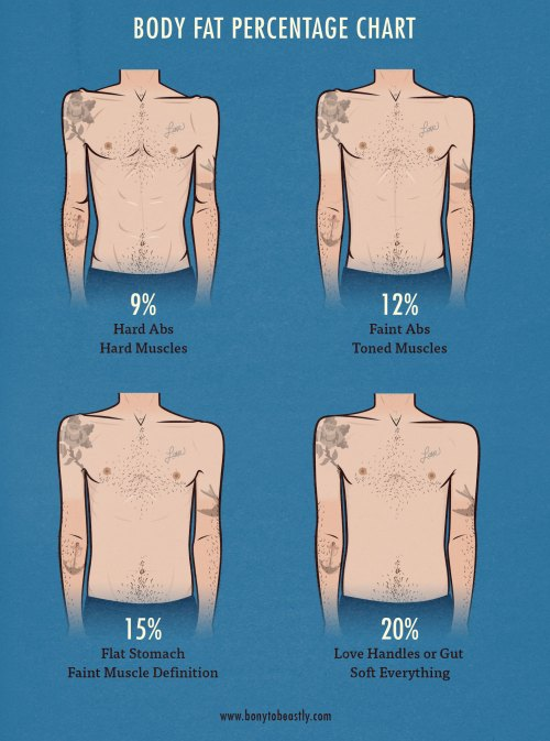 small resolution of men s body fat percentage illustration chart bony to beastly