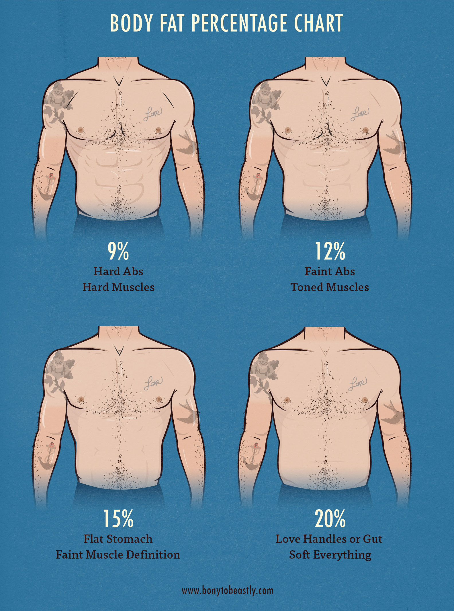 hight resolution of real life body fat percentage examples