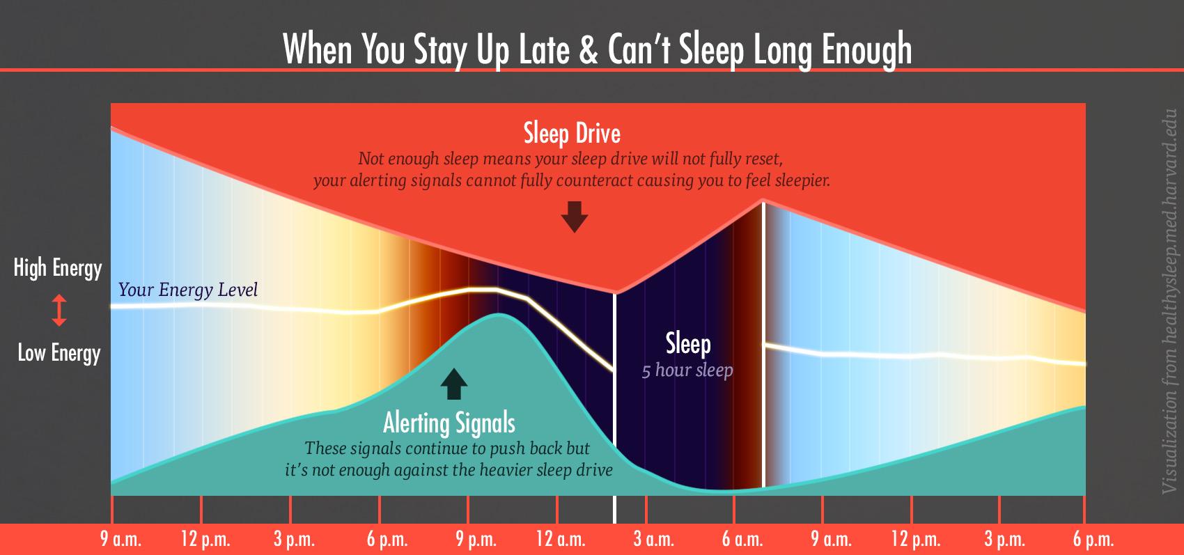 energy-levels-sleep-drive-alert-chart-2-bony-bombshell