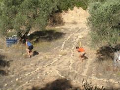 de-compacting the soil