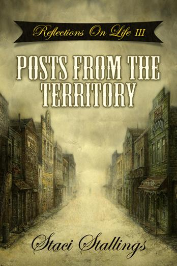Book Cover: Reflections on Life III: Posts From the Territory