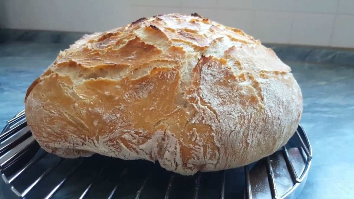 Crispy farmer's bread without kneading (crispy no-knead bread)
