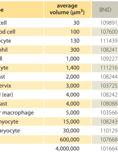 also how big is  human cell rh bookonumbers