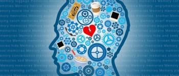memory-higher-faculties