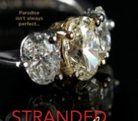 Guest Review: Stranded With A Billionaire by Jessica Clare