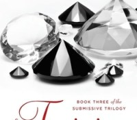 Guest Review: The Training by Tara Sue Me