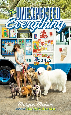 Review: The Unexpected Everything by Morgan Matson