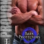 Provoked by Rebecca Zanetti Book Cover