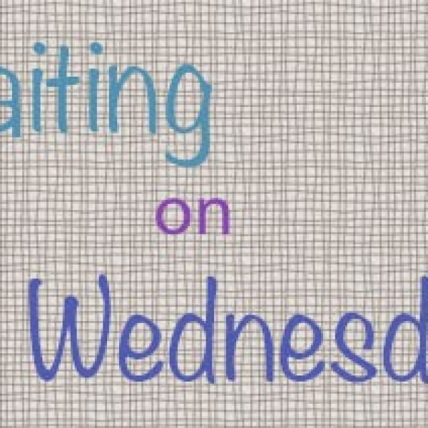 Waiting on Wednesday: Rain Reign by Ann M. Martin
