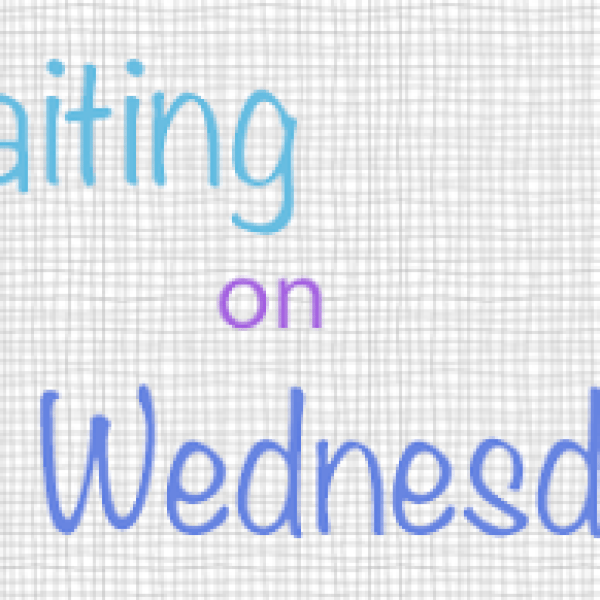 Waiting on Wednesday: Off the Ice by Julie Cross