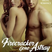 Firecracker Gone Astray – Review