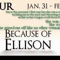 Blog Tour – Because of Ellison