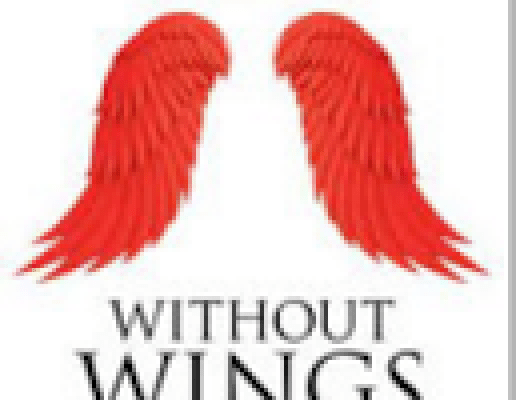 """Without Wings Book One-To Save A Soul"" By Thomas Joseph Beck"
