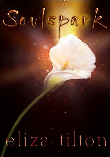 Book Cover: SOULSPARK by Eliza Tilton