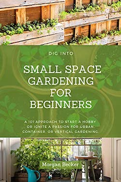 dig into small space gardening