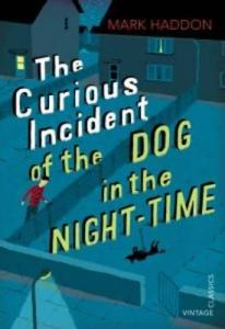 the-curious-incident-of-the-dog-in-the-night-time reviewed by a kid