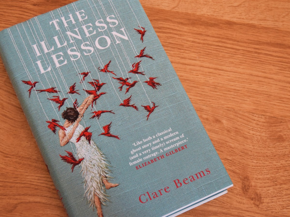Feminist fiction the The Illness Lesson book cover