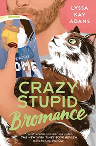 {ARC Review} Crazy Stupid Bromance by Lyssa Kay Adams