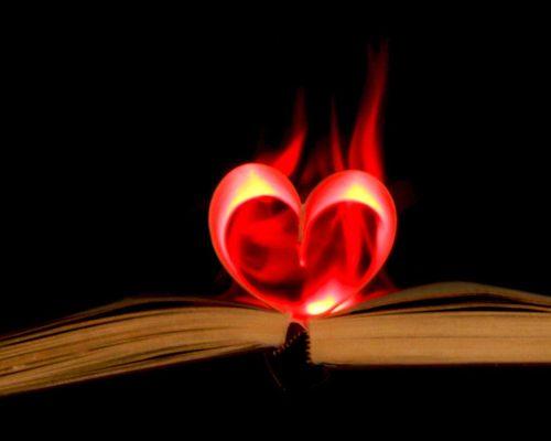 Cu sau fără soluție: probleme ale cititorului