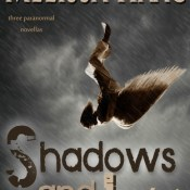 New Release Blitz & Giveaway: Shadows and Light by Melissa Haag