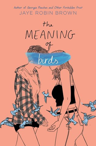 Cover Crush: The Meaning of Birds by Jaye Robin Brown